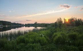 Picture summer, the sun, landscape, sunset, lake