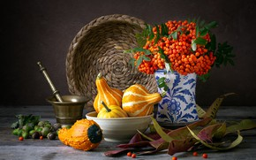 Picture the dark background, table, bouquet, pumpkin, still life, items, acorns, Rowan, composition