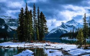 Picture snow, trees, landscape, mountains, clouds, nature, ate, Canada, Jasper, national Park, National Park, Jasper, Maligne …