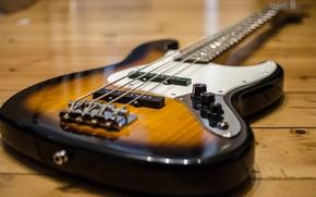 Picture music, rock, Bass guitar, E-Bass
