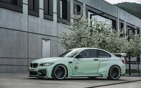 Picture side view, tuning, 2018, Z Performance, BMW M2