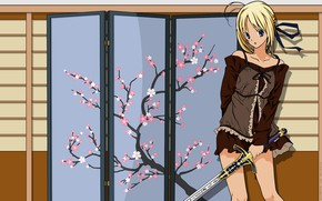 Picture girl, sword, Sakura, the saber, Fate stay night, Fate / Stay Night