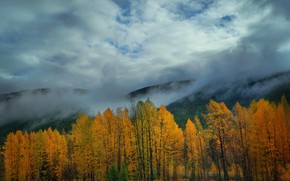 Picture autumn, clouds, trees, mountains