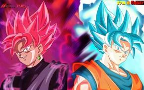 Picture guys, Dragon Ball, Dragonball