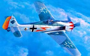 Picture Fw.190A-5, Fw-190, JGr 50, Focke-Wulf, Major Hermann Graf
