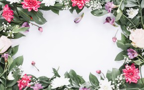 Picture flowers, frame, colorful, pink, flowers, frame, floral