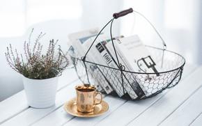 Picture Style, still life, brand, Karazin