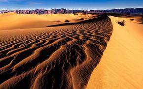 Picture light, desert, dunes, shadows, Sands, relief