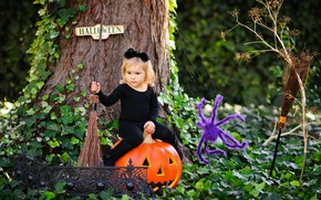 Picture child, spider, girl, Halloween, pumpkin, broom, Pumpkin