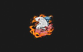 Picture Minimalism, Bird, Fire, Style, Flag, Eagle, Background, USA, USA, Eagle, Fire, Art, Art, Style, Background, …