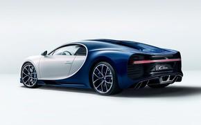Picture bugatti, white, wheels, blue, background, ligth, chiron