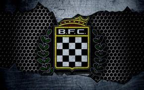 Picture wallpaper, sport, logo, football, Boavista