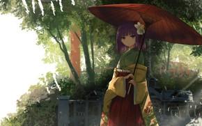 Picture girl, nature, umbrella