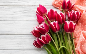 Picture flowers, bouquet, tulips, pink, pink, flowers, tulips