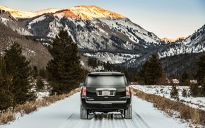 Picture rear view, 2018, GMC, SUV, Denali, Yukon