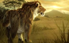 Picture Leo, Sabretooth, prehistoric animal