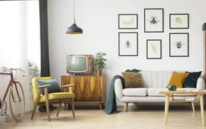 Picture design, interior, retro style, living room, mid century modern style