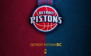 Picture wallpaper, sport, logo, basketball, NBA, Detroit Pistons
