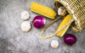 Picture autumn, corn, bow, fruit, garlic