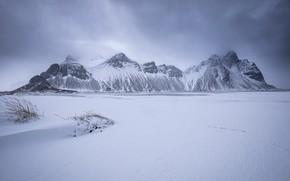 Picture Iceland, East, Vestrahorn, Hofn