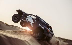 Picture 2008, Peugeot, DKR 16