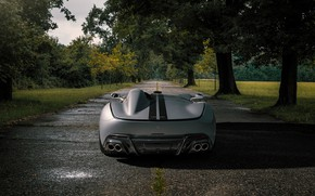 Picture Ferrari, V12, Monza, Novitec, 2020, SP1