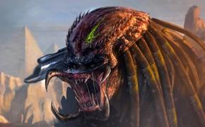 Picture Predator, hunter, Mandibles, Auth, alien race