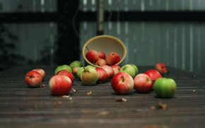 Picture table, tree, apples, plate, fruit