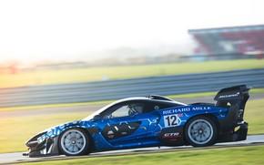 Picture McLaren, speed, GTR, racing car, Senna, 2019