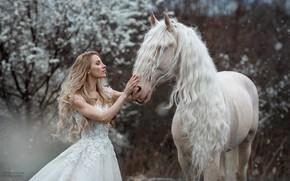Picture girl, horse, horse, dress, blonde, long hair, Marketa Novak, Marie Renčová Kružíková, длинная грива