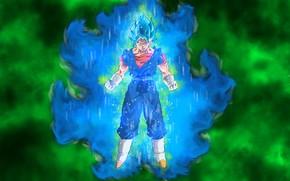 Picture Dragon ball, dragon ball super, Vegito Dragon, Vegito Blue