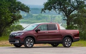 Picture trees, Honda, 2019, pickup, side view, Ridgeline