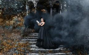 Picture nature, pose, smoke, dove, dress, ladder, devuschka, Acts Novels