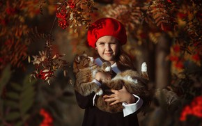 Picture autumn, cat, branches, berries, girl, takes, Rowan, Алина Иванова