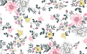 Picture white, flowers, background, pattern, background