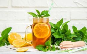 Picture lemon, tea, Bank, ice, drink, mint