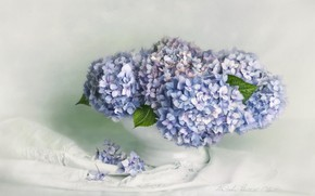 Picture flowers, bouquet, art, fabric, white, vase, still life, painting, light background, lilac, hydrangea, composition