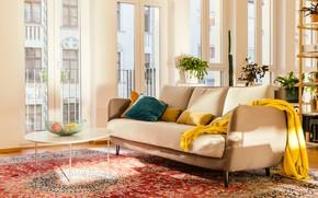 Picture room, interior, sofa, living room, solar