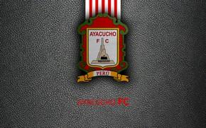 Picture wallpaper, sport, logo, football, Ayacucho