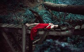 Wallpaper girl, bridge, the situation