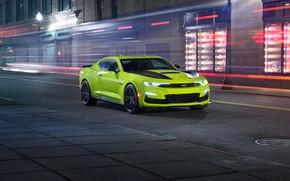 Picture Chevrolet, Camaro, Camaro SS, 2018, Shock Concept