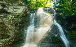 Picture greens, rays, light, rocks, waterfall, stream