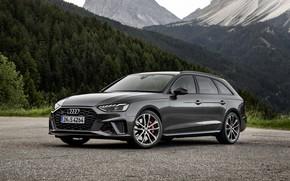 Picture Audi, universal, 2019, dark gray, A4 Avant, S4 Before