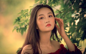 Picture leaves, girl, branches, makeup, brunette, neckline, Asian, shoulders