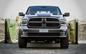 Picture Dodge, front view, pickup, Ram, 2017, 1500 RX Crew Cab, Militem