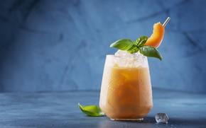 Picture ice, glass, cocktail, drink, melon, Oxana Denezhkina
