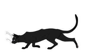 Picture cat, vector, art, children's, Kuroi-Hitsuji