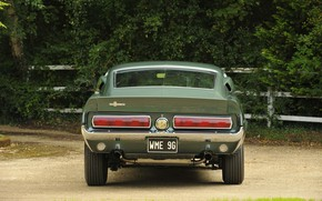 Picture Ford Mustang, 1967, Muscle Car, Rear view, Shelby GT350