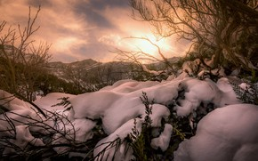 Picture winter, the sky, the sun, light, snow, trees, mountains, branches, tops, the snow, snow, piled …