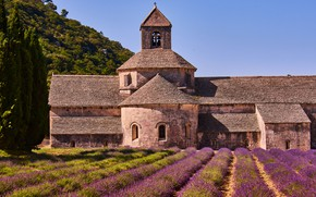 Picture field, summer, the sky, flowers, nature, castle, France, architecture, a lot, lavender, lilac, plantation, Provence, …